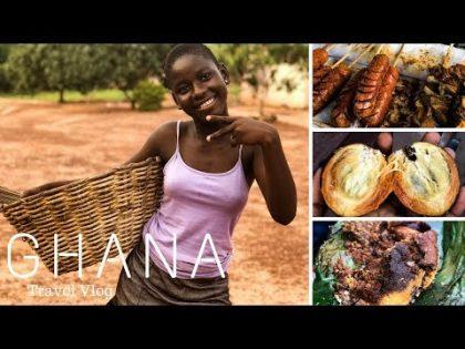 Ghana Travel Vlog 2017/2018 | Travel Vlog