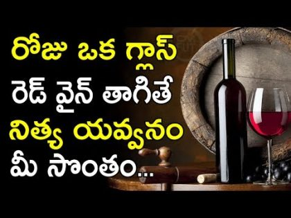 Drinking Red Wine For Health And Beauty | Health Benefits Of Red Wine || Health Tips