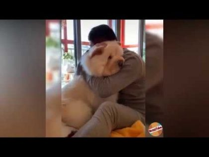Funny Moments part 1| Funpreme | Funny video 2019