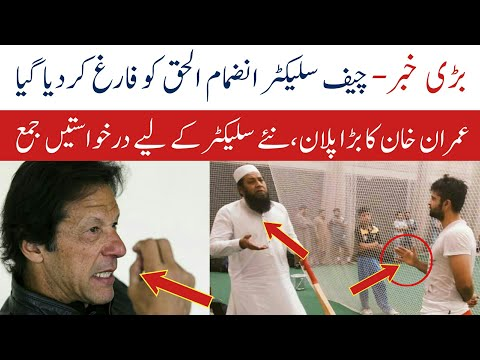 Pakistan Cricket Team New Chif selecter | inzmam ul haq | pakistan Cricket News | Bilal Cricket tv