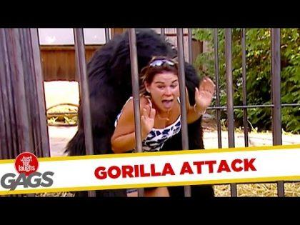 Gorilla Attack & Burnt Dollar Bill Pranks – Throwback Thursday