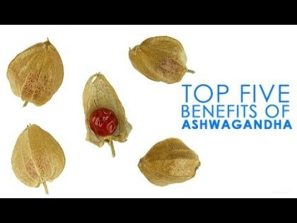Top 5 Benefits Of Ashwagandha | Best Health and Beauty Tips