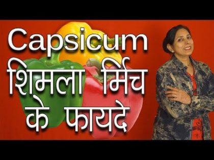 शिमला मिर्च के फायदे । Health and Beauty benefits of Capsicum Shimla Mirch   Pinky Madaan