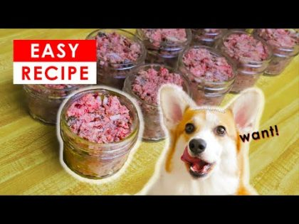 BEST HOMEMADE RAW DOG FOOD RECIPE – MADE EASY!!!