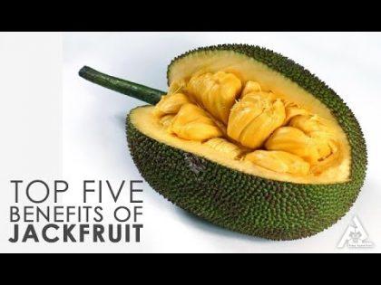 Top 5 Benefits Of Jackfruit   Lifestyle and Beauty Tips   Health Food