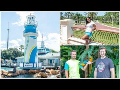 Sea World Orlando Florida Travel Vlog