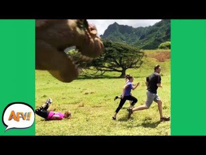 Jurassic FACEPLANT! 🤣🦖   Funny Fails   AFV 2020