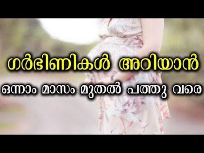 ഗർഭിണികൾ ഒന്നാം മാസം മുതൽ പത്താം മാസം വരെ അറിഞ്ഞിരിക്കാം  Malayalam health and beauty tips