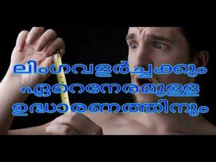 ലിംഗവളർച്ചക്കും മികച്ച ഉദ്ധാരണത്തിനും / natural health and beauty tips in malayalam