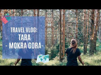 Travel Vlog: Mokra Gora, Tara, jul 2020.