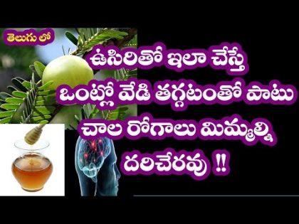 Health and Beauty Benefits of Amla (Indian Gooseberry) ( ఉసిరికాయ ) in telugu II Health Tips