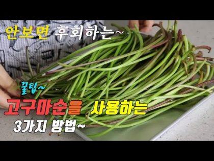 간단하고 맛있는 고구마순 요리 3가지~ 강쉪^^ korean food recipe, 3 kinds sweet potato stems recipe