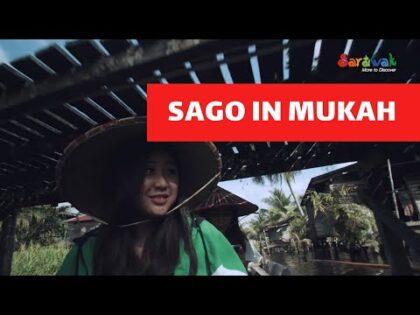 Sago In Mukah   Sarawak Travel Vlog E3