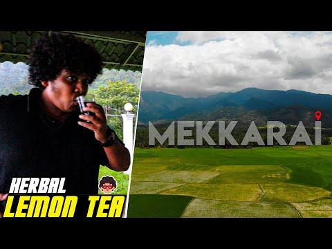 Trip to Mekkarai – Travel Vlog – Irfan's View