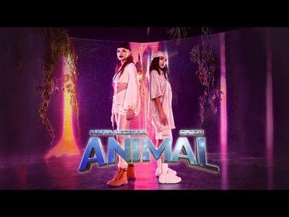 Maria Becerra, Cazzu – ANIMAL (Official Video)