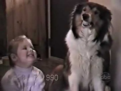 America's funniest home videos season 18 finale