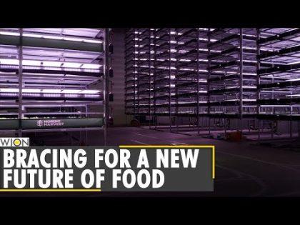 Europe's largest vertical farm opens in Denmark | Europe News | World News