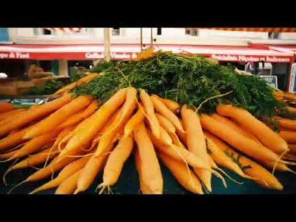 9 Health and Beauty Benefits of Carrots || 9 క్యారెట్ల ఆరోగ్యం మరియు అందం ప్రయోజనాలు