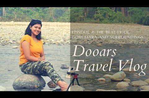 Dooars Travel Vlog Series – Part 2 | The Beauty of Gorumara and surroundings