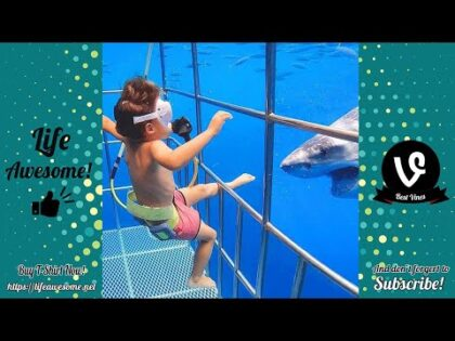 Funny Animals Reaction – Try Not To Laugh Shark With Baby
