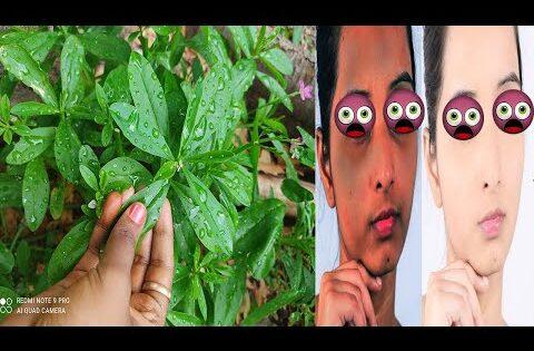 1 நாளில் இப்படி அசத்தலான வெள்ளை நிறம் பெற இத செயுங்க | face beauty tips in tamil | beauty tips tamil