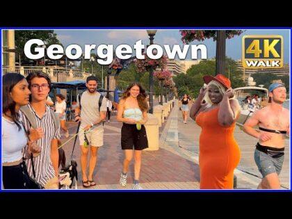 【4K】WALK Georgetown Washington DC USA 4k video TRAVEL vlog