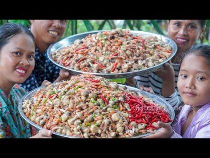 Fried Straw Mushroom Prawn with Fresh Coconut Milk Food Recipe – Mushroom For Donation in Village